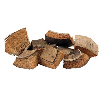 Coconut Shell and Husk Pieces - Pack of 8