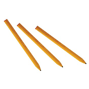 Parrot Pencil Foot Toys - Large - Pack of 3