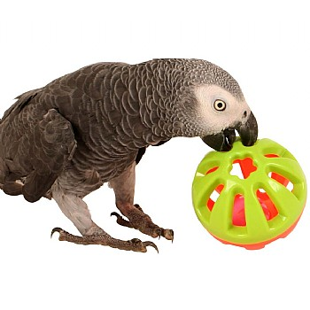 Northern_Parrots Jingle Ball Parrot Play Toy - Medium