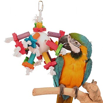 Space Station Parrot Toy