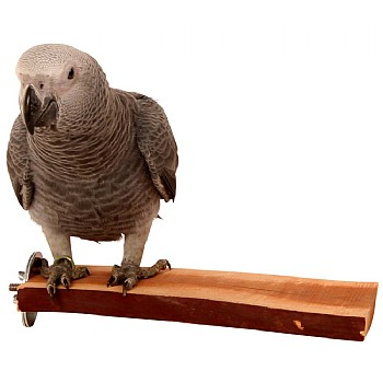 Manzanita Flat Parrot Perch - Large