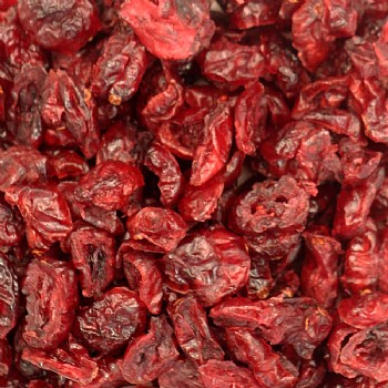 Dried Cranberry Parrot Treat - 100g