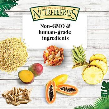 Lafeber Nutri-Berries Tropical Fruit Complete Parrot Food - Alternative Image 3