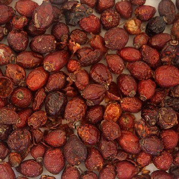 Tidymix Whole Rosehips Parrot Treat - 125g