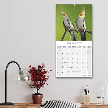 other 2018 Cockatiel Calendar