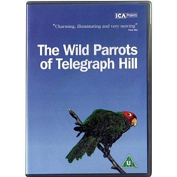 The Wild Parrots of Telegraph Hill DVD