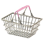 Shopping Basket - Trick Training Parrot Toy