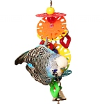 Stacks And Shapes Parrot Toy