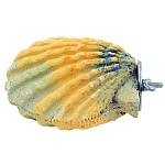 Polly`s Comfy Clam Flat Parrot Perch - Small