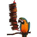 Shredding Spiral Parrot Toy