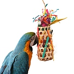 Grand Slam Foraging Pocket Parrot Toy