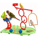 Birdie Basketball Gym - Activity Centre for Smaller Parrots
