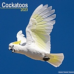 2018 Cockatoo Calendar