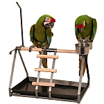 Tabletop Parrot Stand with Toy Hanger & Feeder