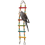 Coloured Bendy Ladder Parrot Climbing Toy
